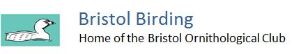 Bristol Ornithological Club