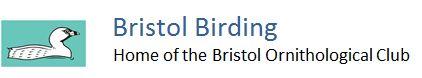 Bristol Ornithological Club